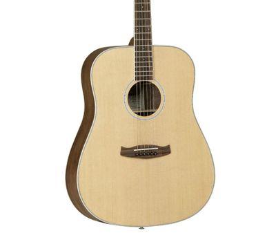 Акустическая гитара Tanglewood DBT-D-BW фото 3 | Интернет-магазин Bangbang