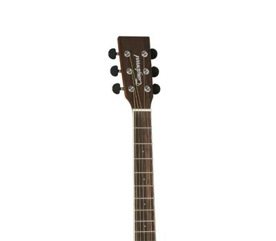 Акустическая гитара Tanglewood DBT-D-BW фото 5 | Интернет-магазин Bangbang