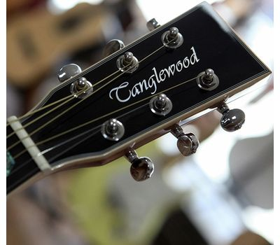 Акустическая гитара Tanglewood TW28 Svab фото 5 | Интернет-магазин Bangbang