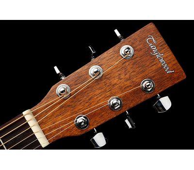 Акустическая гитара Tanglewood TWCR D фото 5 | Интернет-магазин Bangbang