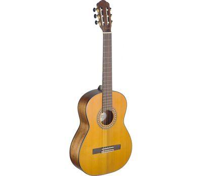 Классическая гитара Angel Lopez Sil-M фото 1   Интернет-магазин Bangbang