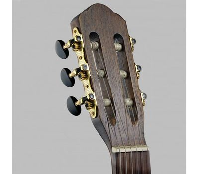 Классическая гитара Angel Lopez Sil-M фото 2   Интернет-магазин Bangbang