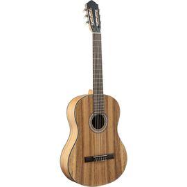 Классическая гитара Flight C-110 AC 4/4 фото 1   Интернет-магазин Bangbang
