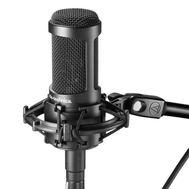 Конденсаторный студийный микрофон Audio Technica AT2050 фото 1 | Интернет-магазин Bangbang