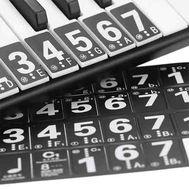 Наклейки на пианино фото 1 | Интернет-магазин Bangbang