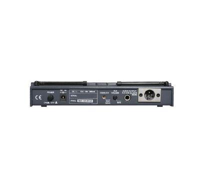 Радиомикрофон Seikaku WR802DV/SUT801 фото 3 | Интернет-магазин Bangbang