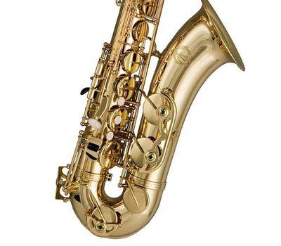 Саксофон-тенор Trevor James 384SR-KK фото 3 | Интернет-магазин Bangbang