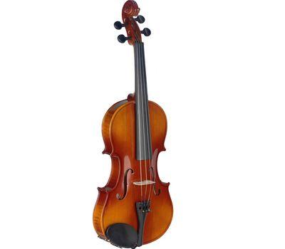 Скрипка Stagg VN 1/2 EF в мягком кейсе фото 1 | Интернет-магазин Bangbang