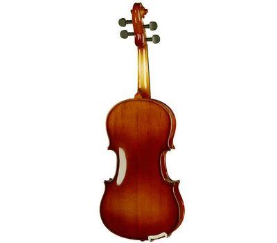 Скрипка Stagg VN 1/2 EF в мягком кейсе фото 3 | Интернет-магазин Bangbang