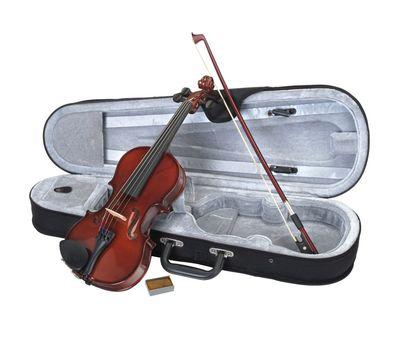 Скрипка Stagg VN-4/4 с мягким кейсом фото 1 | Интернет-магазин Bangbang