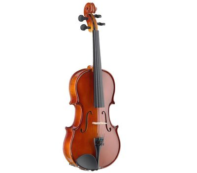 Скрипка Stagg VN 1/2 с мягким кейсом фото 1 | Интернет-магазин Bangbang