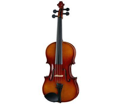 Скрипка Stagg VN 1/8 с мягким кейсом фото 1 | Интернет-магазин Bangbang