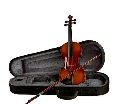 Скрипка Stagg VN 1/8 с мягким кейсом фото 7 | Интернет-магазин Bangbang