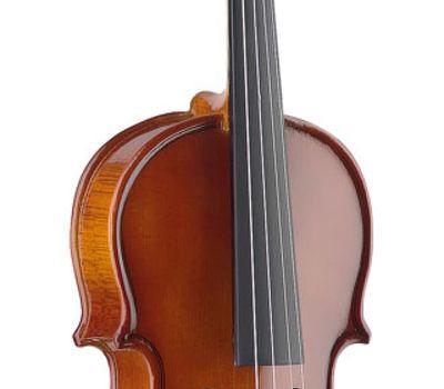 Скрипка Stagg VN 3/4 EF в мягком кейсе фото 3   Интернет-магазин Bangbang