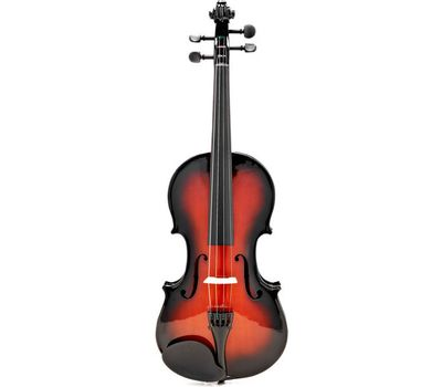 Скрипка Stagg VN-4/4 SB с мягким кейсом фото 2 | Интернет-магазин Bangbang