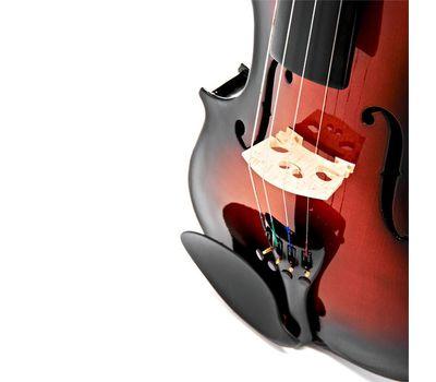 Скрипка Stagg VN-4/4 SB с мягким кейсом фото 6 | Интернет-магазин Bangbang
