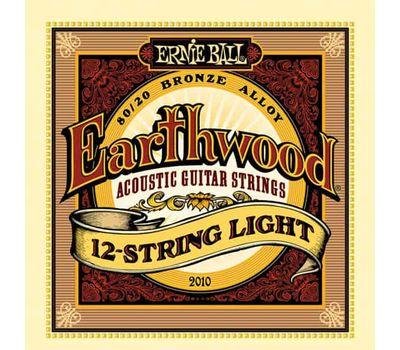 Струны для 12-и струнной гитары Ernie Ball 2010 фото 1 | Интернет-магазин Bangbang