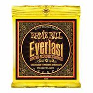 Струны для акустической гитары Ernie Ball 2556 фото 1 | Интернет-магазин Bangbang